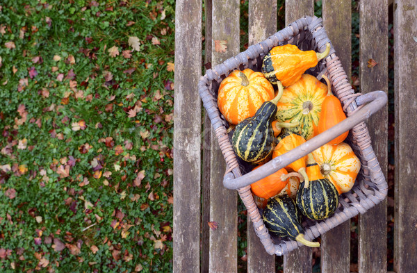 Orange, green and yellow ornamental gourds in a basket Stock photo © sarahdoow