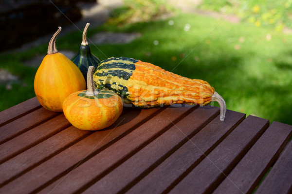 Assorted smooth and warty ornamental gourds on wooden table Stock photo © sarahdoow