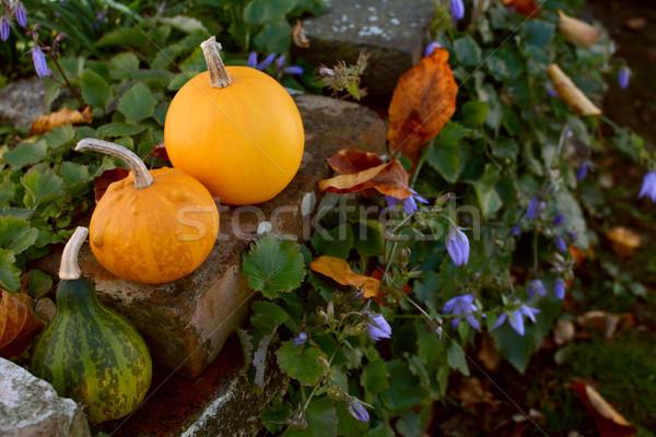 три небольшой декоративный деревенский кирпичная стена осень Сток-фото © sarahdoow