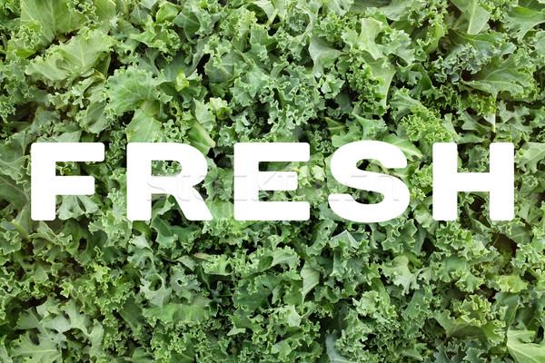 Stock fotó: Friss · szöveg · levelek · írott · zöld · aprított