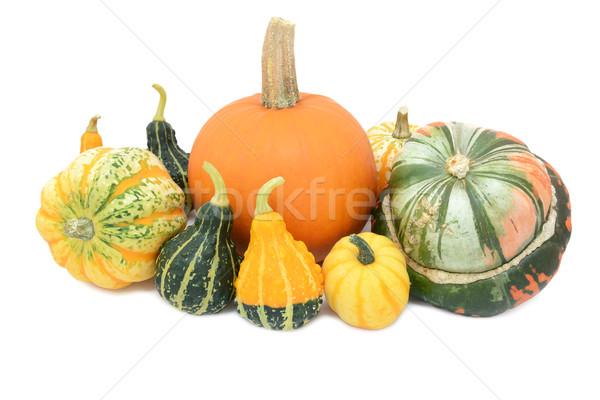 Sütőtök fesztivál fallabda turbán díszítő csoport Stock fotó © sarahdoow