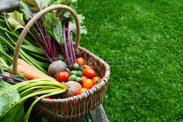 Woven basket filled with freshly harvested vegetables from an al Stock photo © sarahdoow