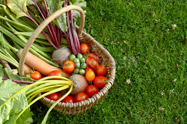 Rústico cesta verduras frescas zanahorias tomates espacio de la copia Foto stock © sarahdoow