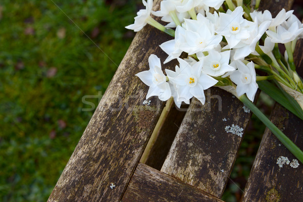 White narcissi flowers on a wooden garden seat Stock photo © sarahdoow