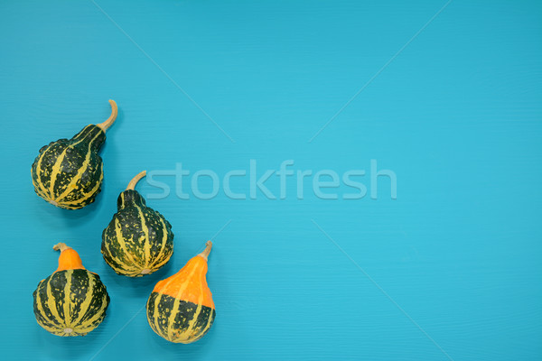 Green and yellow ornamental gourds on bright blue background Stock photo © sarahdoow