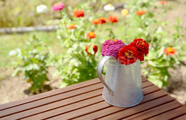 素朴な 花 庭園 表 金属 ストックフォト © sarahdoow