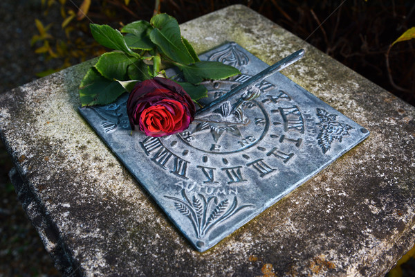 Red rose lying on a weathered sundial Stock photo © sarahdoow