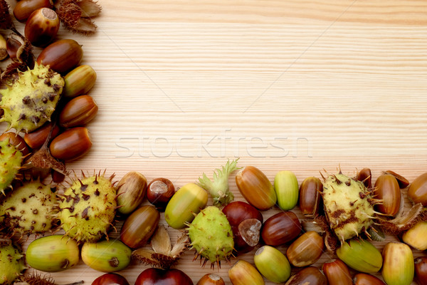 Two-sided frame of natural fall material - horse chestnuts, acor Stock photo © sarahdoow