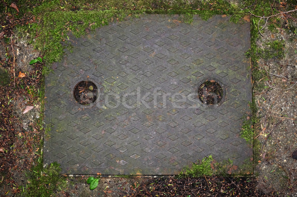 Stock photo: Metal drain cover in concrete path