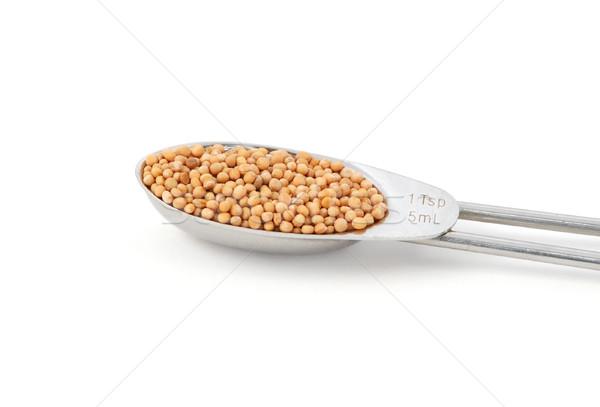 Egész mustár magok fém teáskanál izolált Stock fotó © sarahdoow