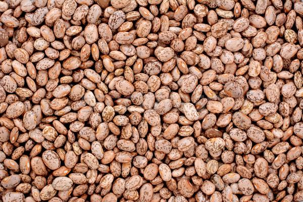 Pinto beans background Stock photo © sarahdoow