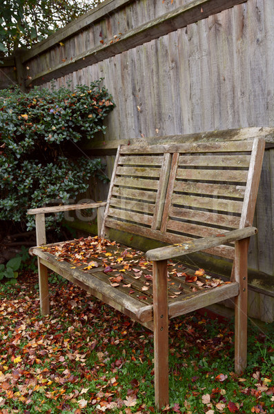 Rustic wooden bench covered in autumn leaves Stock photo © sarahdoow