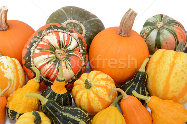 Pile of pumpkins and squashes with ornamental gourds Stock photo © sarahdoow