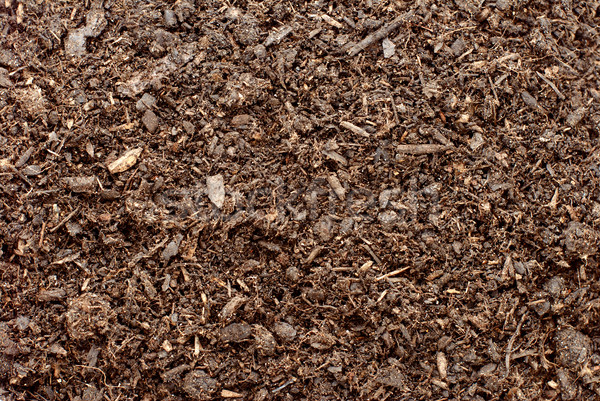 Bodem vuil abstract textuur natuur achtergrond Stockfoto © sarahdoow