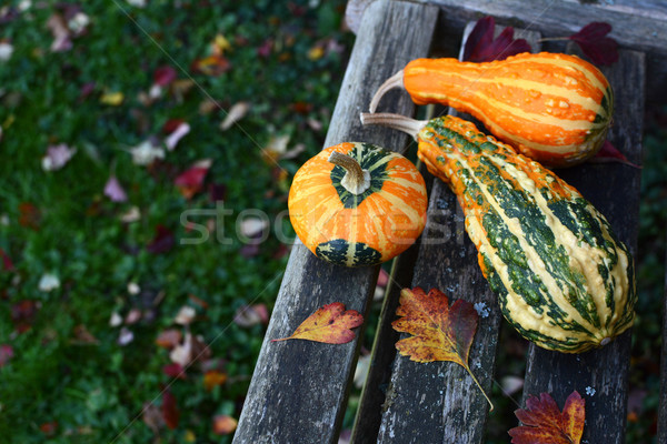 Three ornamental gourds among autumn leaves on wooden bench Stock photo © sarahdoow