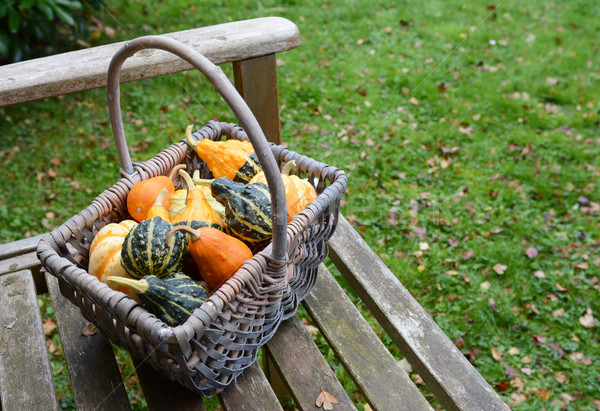 Rustic basket filled with a selection of ornamental gourds Stock photo © sarahdoow