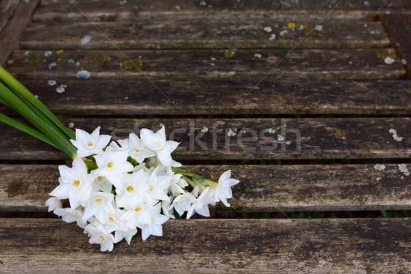 Bunch of white narcissi flowers on a rustic bench Stock photo © sarahdoow