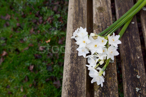 White narcissi on a weathered wooden garden bench Stock photo © sarahdoow