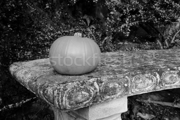 Foto d'archivio: Piccolo · pietra · panchina · frutti · di · bosco · in · bianco · e · nero · caduta