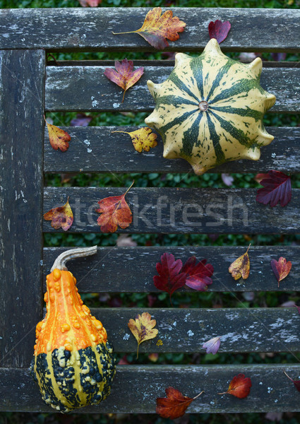 Crown of Thorns and pear-shaped gourd on weathered bench Stock photo © sarahdoow
