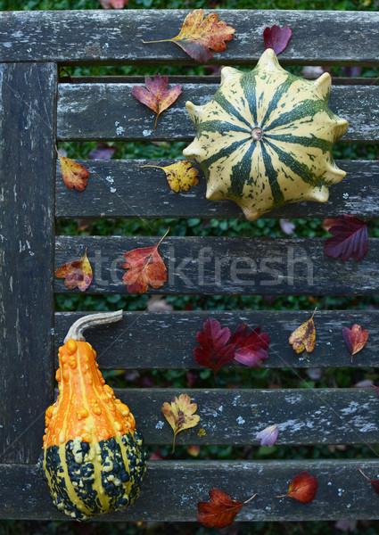 Taç yıpranmış bank sonbahar yaprakları ahşap Stok fotoğraf © sarahdoow