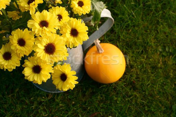 Heldere Geel chrysant metaal oranje Stockfoto © sarahdoow