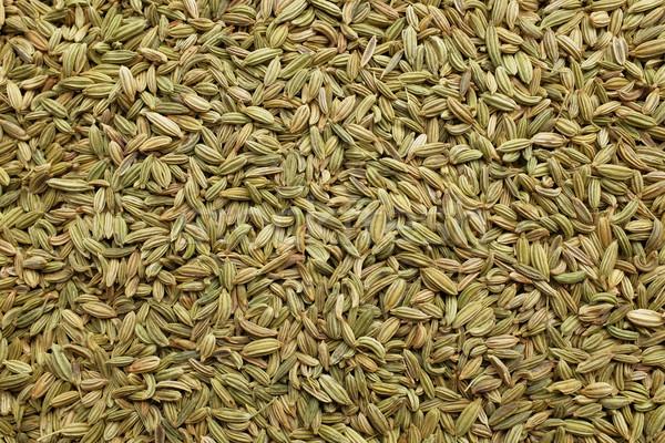 Funcho sementes secas abstrato textura semente Foto stock © sarahdoow