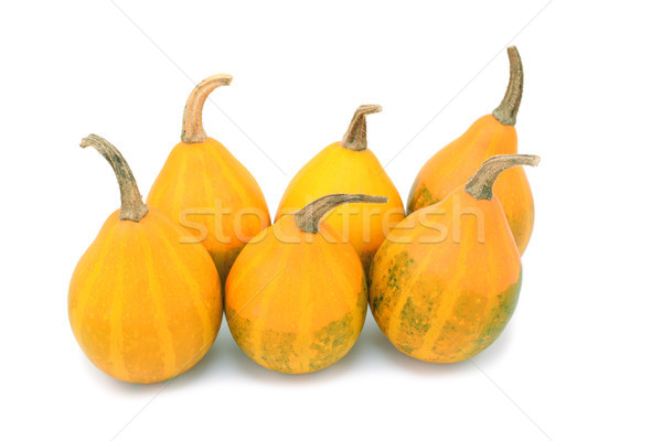 Six orange pear bicolor ornamental gourds with faded green marki Stock photo © sarahdoow