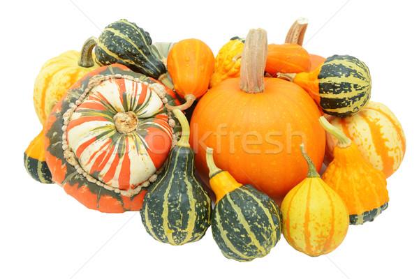 Grupy jesienny turban miąższ mieszany Zdjęcia stock © sarahdoow