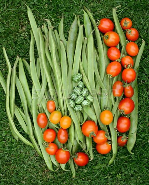 Foto stock: Fresco · verde · corredor · feijões · tomates · vermelho