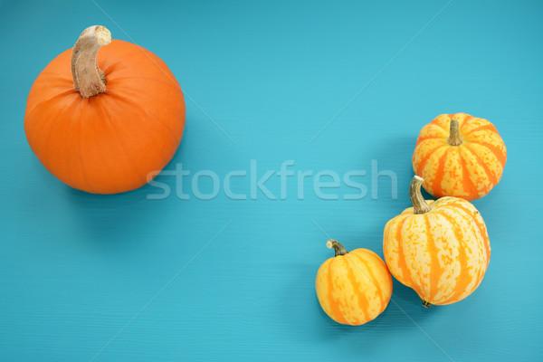 Orange pumpkin and yellow squash on teal painted wood Stock photo © sarahdoow