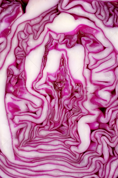 Cut face of red cabbage background Stock photo © sarahdoow