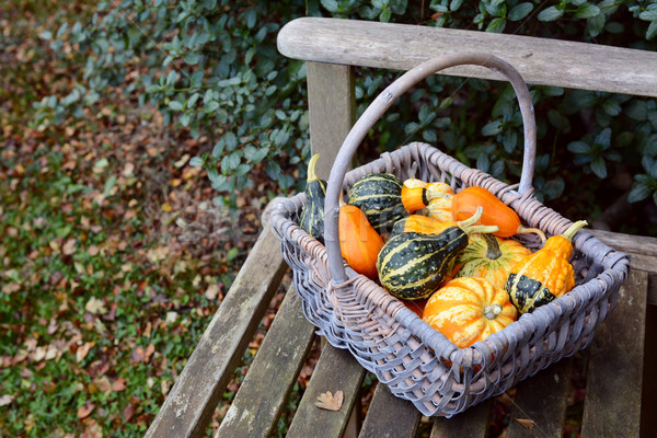 Variety of brightly coloured ornamental gourds Stock photo © sarahdoow