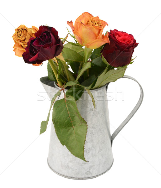Four faded rose flowers in a metal jug Stock photo © sarahdoow