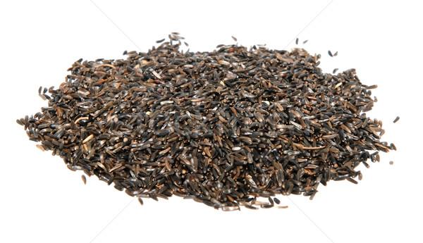 Foto stock: Níger · semillas · aislado · blanco