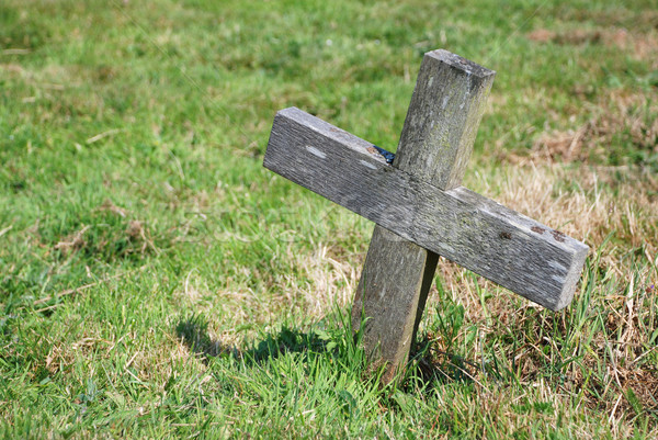 Small wooden cross in a graveyard Stock photo © sarahdoow