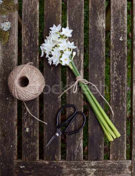 Narcissi tied with twine, with garden string and scissors Stock photo © sarahdoow