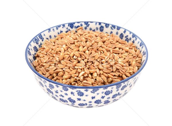 Farro dicocco, or Italian spelt, in a blue and white china bowl Stock photo © sarahdoow