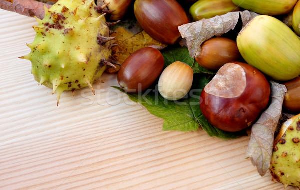 Stock fotó: Ló · őszi · levelek · átló · űrlap · keret · fából · készült