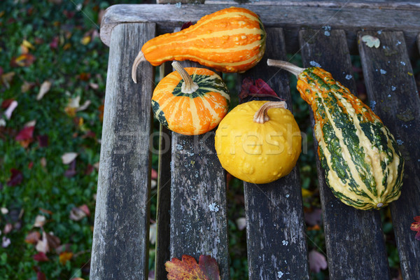 Assorted orange, green and yellow ornamental gourds on rustic be Stock photo © sarahdoow