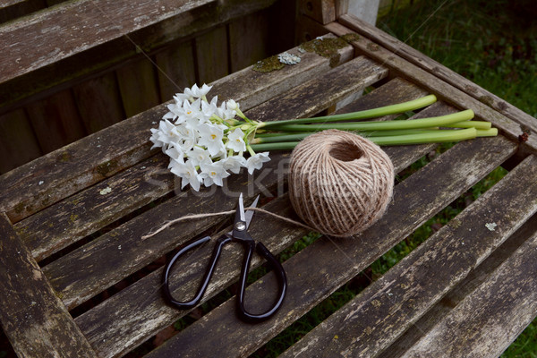 Flower scissors cutting twine, next to a bunch of narcissi Stock photo © sarahdoow