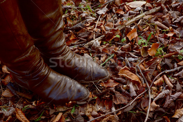 Stock photo: Woman stands in brown leather boots in an autumnal wood