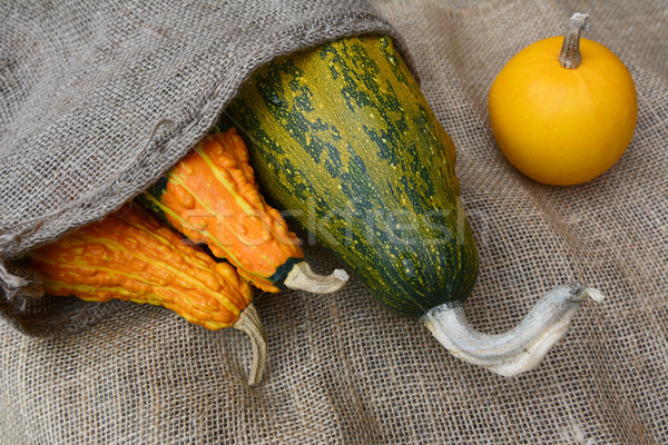 Three gourds in a burlap sack with yellow ornamental squash Stock photo © sarahdoow