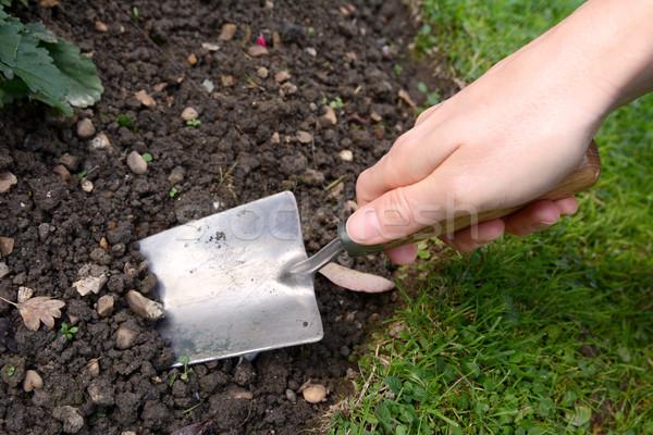 Nő kéz ásatás fém föld kert Stock fotó © sarahdoow