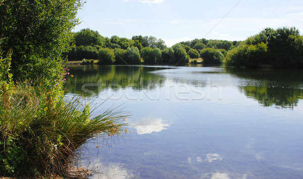 Foto d'archivio: Pacifica · lago · view · Inghilterra · paese · parco