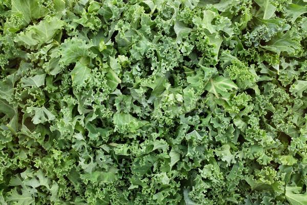 Shredded kale leaves background Stock photo © sarahdoow