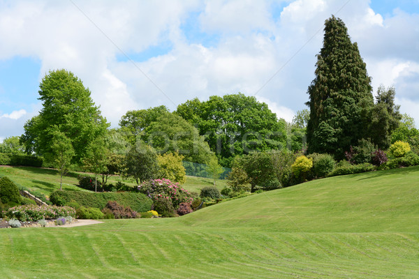 Calverley Grounds - picturesque public park in Tunbridge Wells Stock photo © sarahdoow