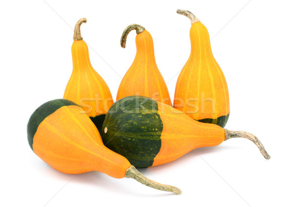 Five smooth, pear-shaped orange and green ornamental gourds Stock photo © sarahdoow