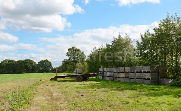 Farm trailer and wooden fruit crates ready for harvest Stock photo © sarahdoow