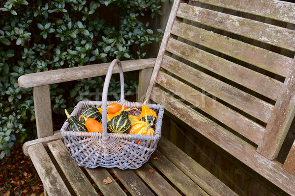Woven basket full of orange, green and yellow ornamental gourds Stock photo © sarahdoow
